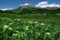 Green Crested Butte print