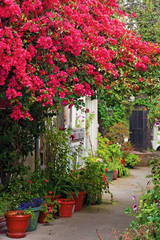 Carmel-By-The-Sea, Courtyards,storybooks, mike Barton