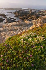 Pacific Grove, Monterey Peninsula, Point Piños, California, coastline, Ocean, photograph, prints, Mike Barton