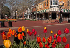 Pearl Street Mall, Boulder's, Colorado, photography, fine art prints, Mike Barton, boulder cafe