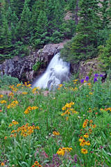 Ouray, photograph, waterfalls, wildflowers, Colorado, photography, fine art prints, Mike Barton