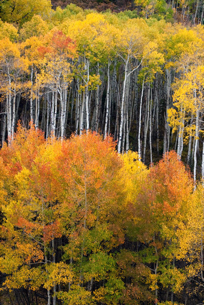 Photo, McClure Pass, Colorado, photography, fine art prints, Mike Barton, photo