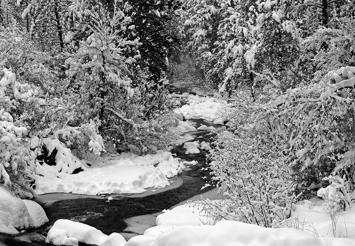 Another March snowstorm left the mountains with a blanket of heavy snow. I watched the forecast the night before, and the weatherman...
