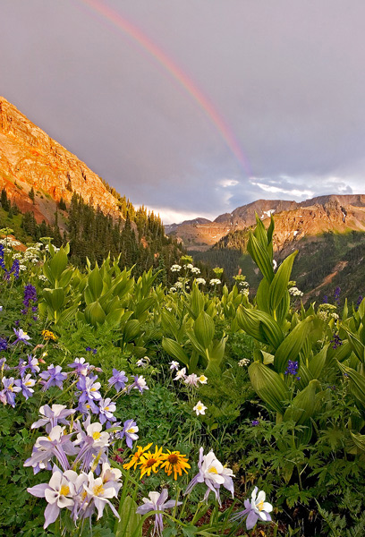 This photo was taken near the Twin Falls in Yankee Boy Basin near Ouray after waiting in the truck during a brief early evening...